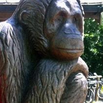 Go Ape! 2